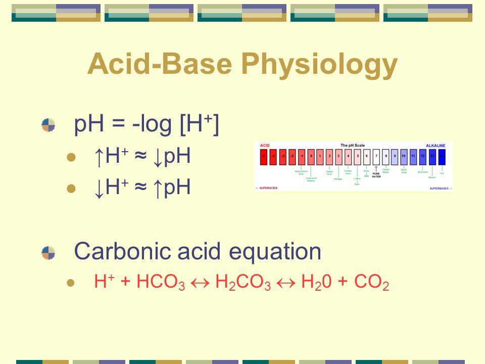 Acid-Base Physiology pH = -log [H+] Carbonic acid equation ↑H+ ≈ ↓pH